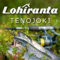 Tenon Lohiranta Oy