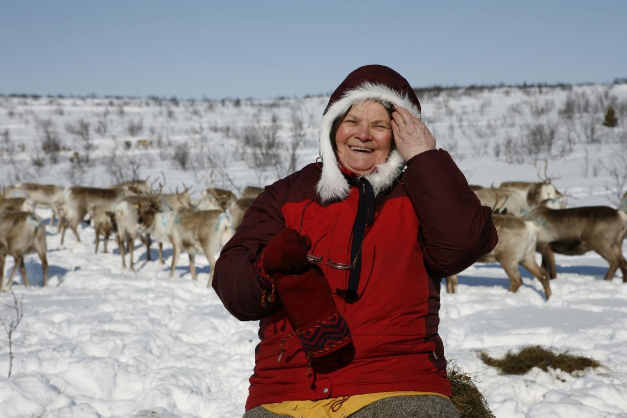 Tutustu saamelaiseen kulttuuriin - Saami village 4